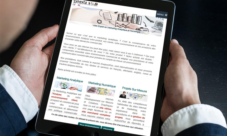Synexta: optimisation moteurs de recherche SEO